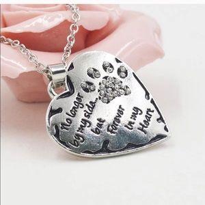 Jewelry - Dog/cat claw necklace